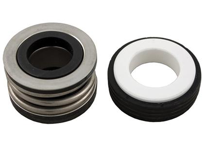 Pump Motor Seals